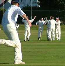 Accies celebrate another wicket in the SNCL Play-off win over Perthshire
