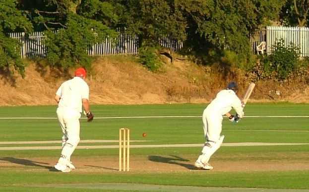 Fritzy scores runs on the leg side just for a change�